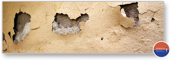 Dampness In Walls And Floors Professional Solutions Diy